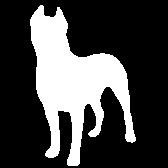 Statementdog logo
